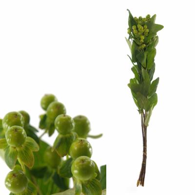 HYPERICUM MAGICAL GREEN 60cm