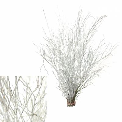 VACCINIUM WHITE 50cm