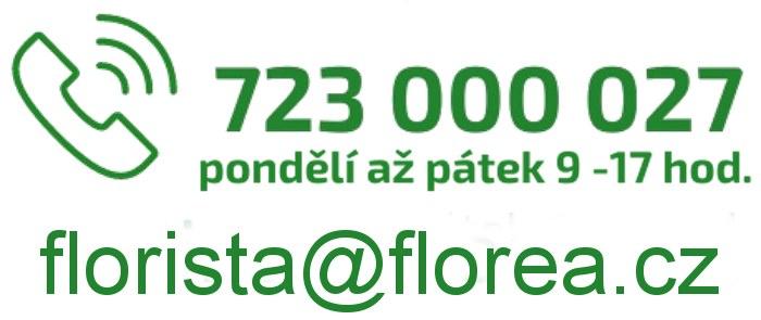 Kontakt na floristky