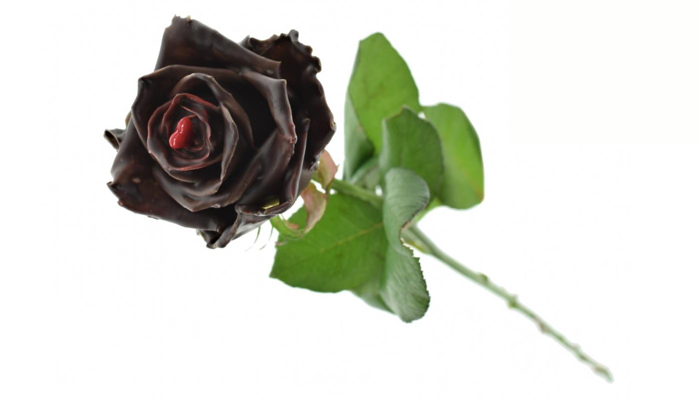 Čokoládová růže Valentine