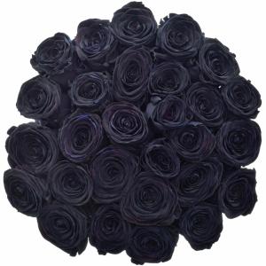 Význam černých růží