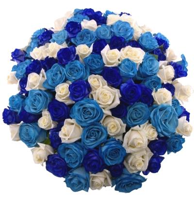 Modré růže - význam