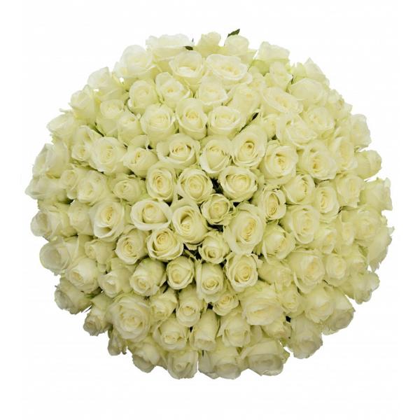 Kytice 100 bílých růží Countdown