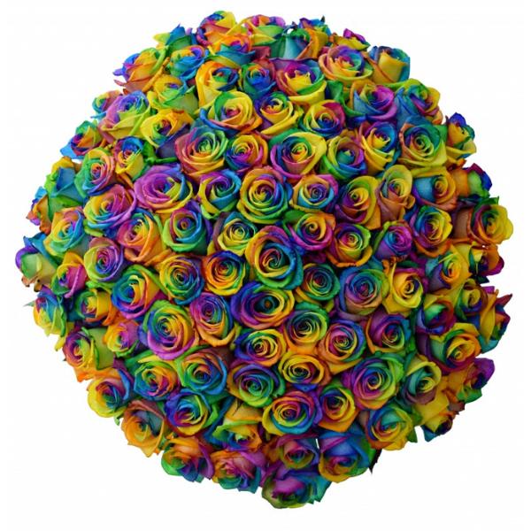 Kytice 100 duhových růží Rainbow