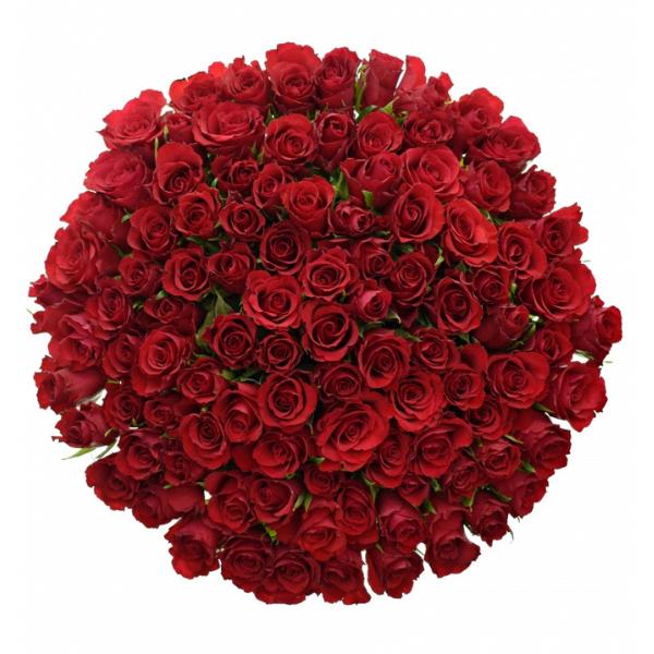 Kytice 100 růží Red Naomi