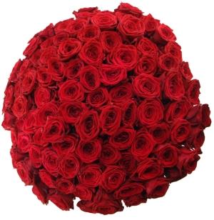 Jaký význam mají rudé růže v květomluvě?