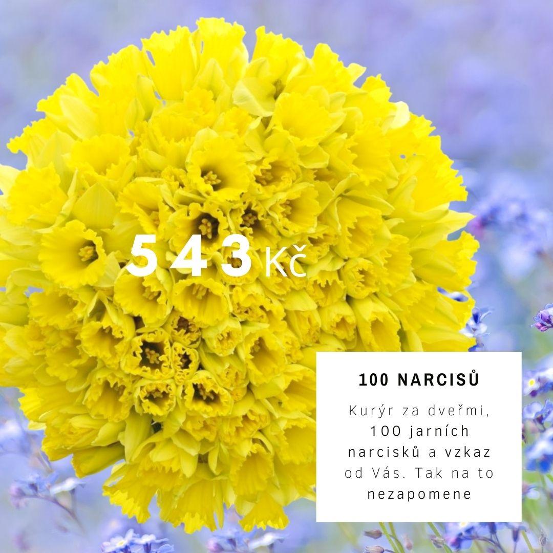 Kytice 100 jarních narcisků.jpg (140 KB)