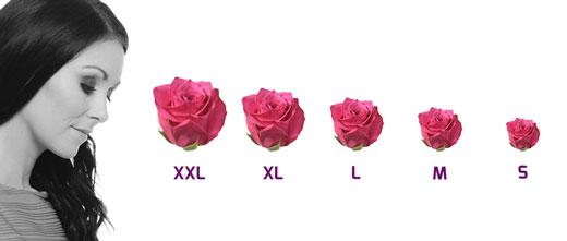 Jak velký květ vybrat?