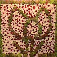 Květinový veletrh FloraHolland