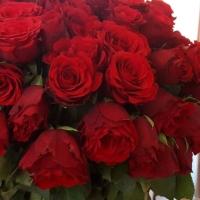 Tipy jak se rozhodně nestarat o květiny
