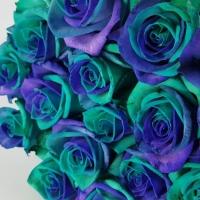 Milované i nenáviděné barvené květiny