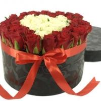 Přání, básničky a vyznání lásky k Valentýnu