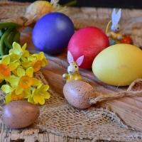 Díl druhý: velikonoční květiny do vázy
