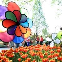 Díl první: Tipy na květinové festivaly