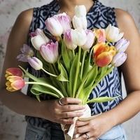 Řezané růže a řezané květiny v číslech