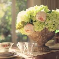 Díl první: květiny podle hosta