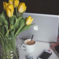 Vybíráme květiny pro kolegyni a nadřízenou