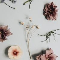 Návod jak vylisovat květiny