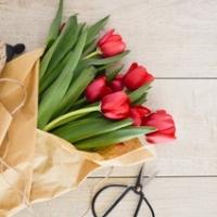 Jak pečovat o řezané tulipány