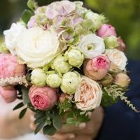 Pivoňky - královny svatebních kytic