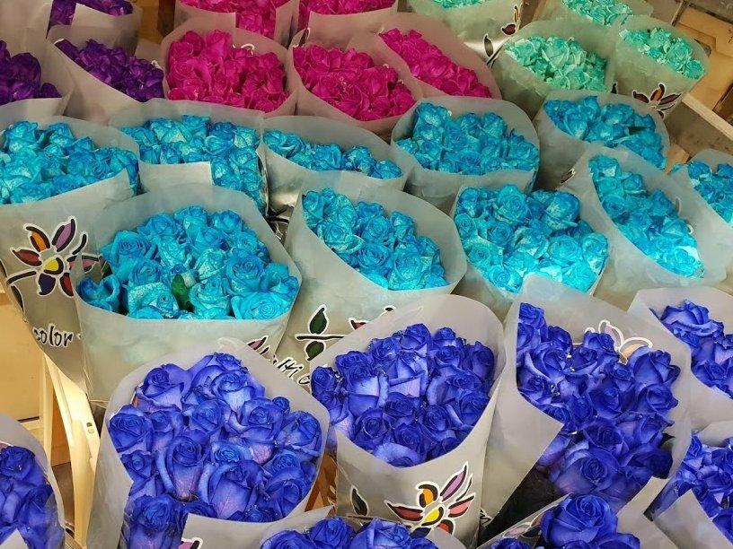 Představujeme: kytice modrých růží