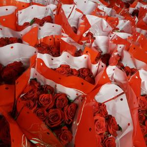 Čerstvé květiny Florea - nejkratší cestou od pěstitele až do vázy