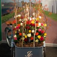 Výstava řezaných květin Flora Holland Fair 2014
