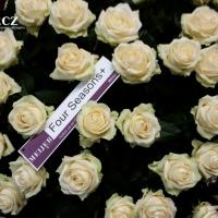 Výstava řezaných květin Flora Holland Fair 2015