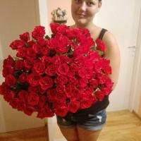 Doručení kytice 100 růží