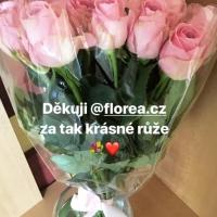 Doručená kytice růžových růží