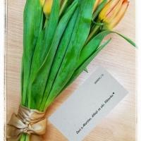 Svazek tulipánů