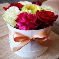 Míchaná krabička růží