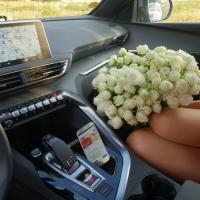 Kytice trsových - vícekvětých růží