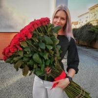 Sto růží Testarossa