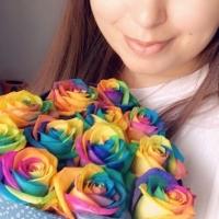 Krabička duhových růží Rainbow
