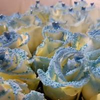 Speciální růže