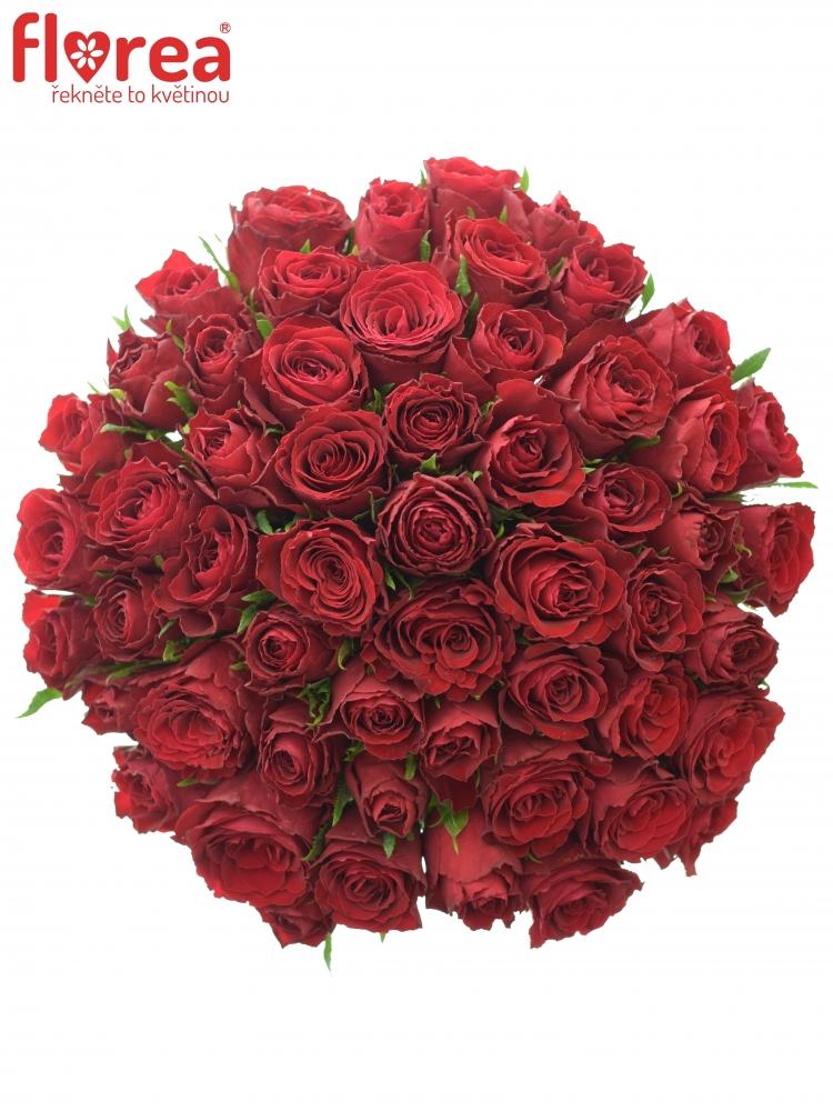 Kytice 55 rudých růží MADAM RED 60cm