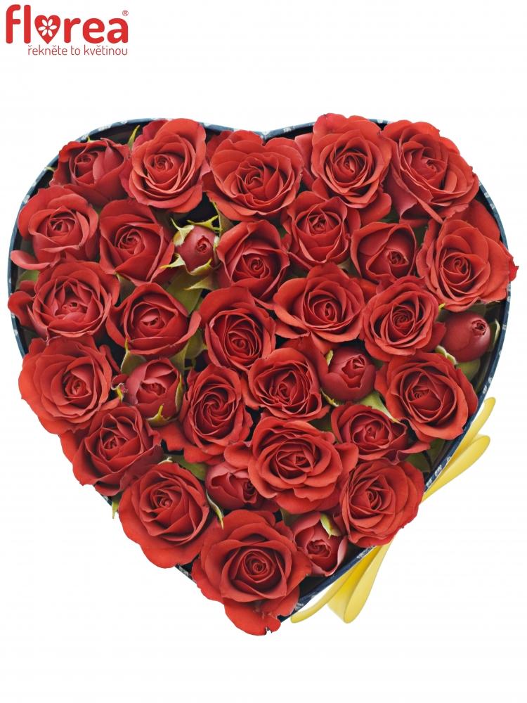 0f56e0d48 Krabička červených růží MIRABEL modrá 15x8cm | Florea