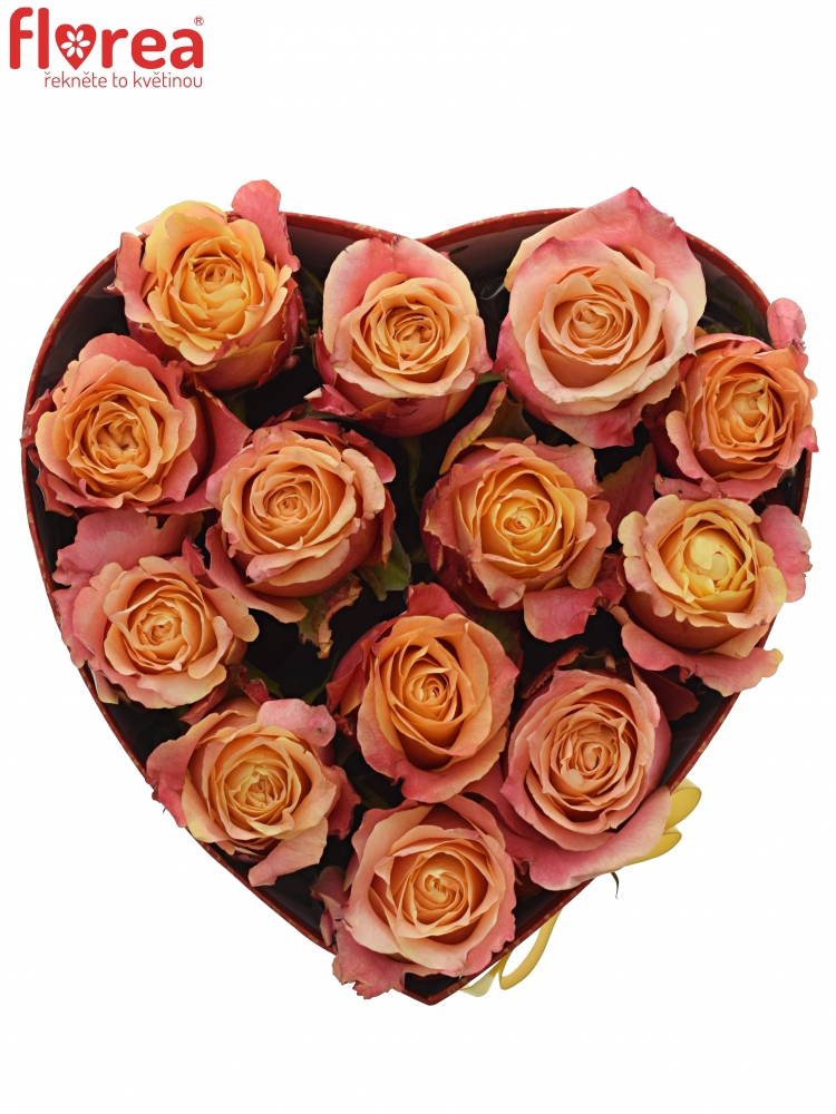 8db955005 Krabička růží 3D červená 24x10cm | Florea