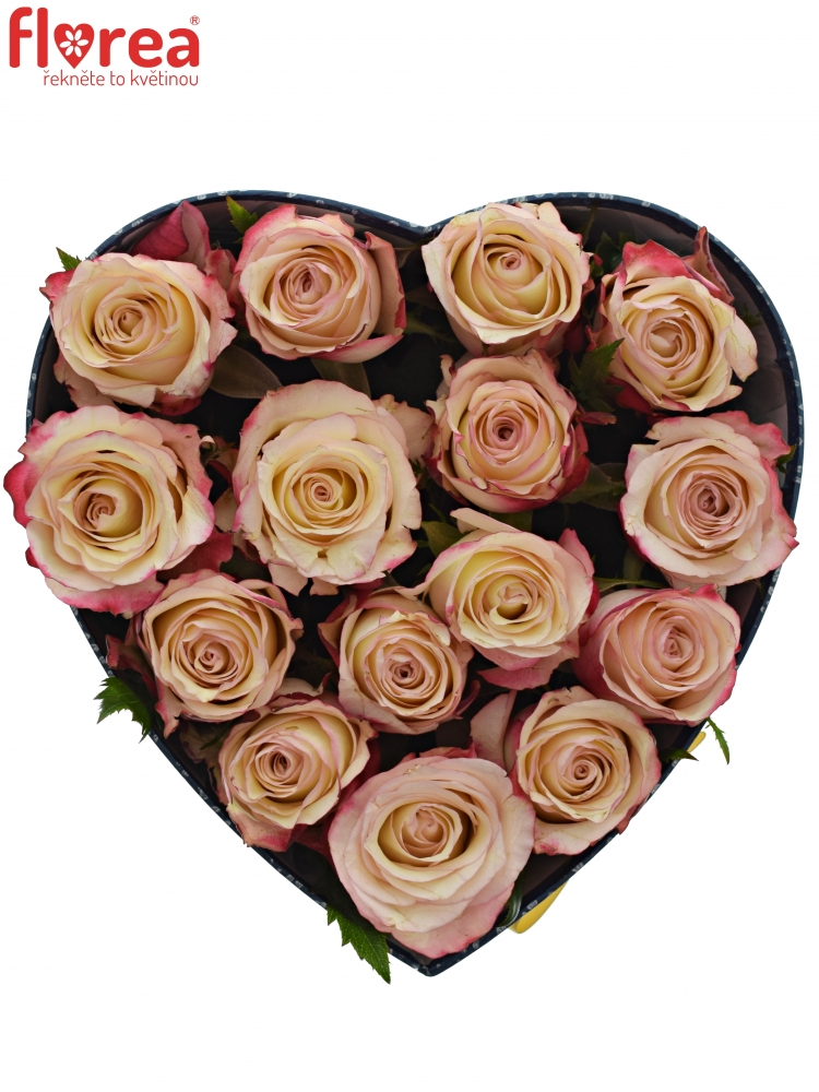 8c6b0d6e0 Krabička růží ADVANCE SWEETNESS modrá 19x9cm | Florea