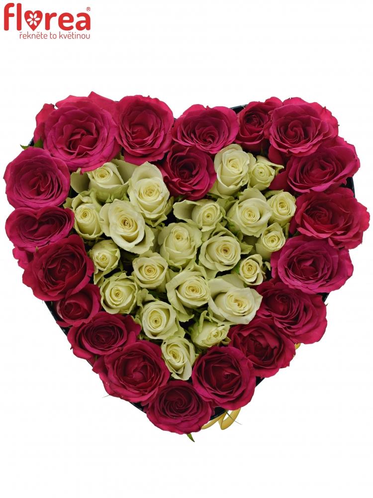 7a8b103f4 Krabička růží FUCHSITENIA modrá 24x10cm | Florea