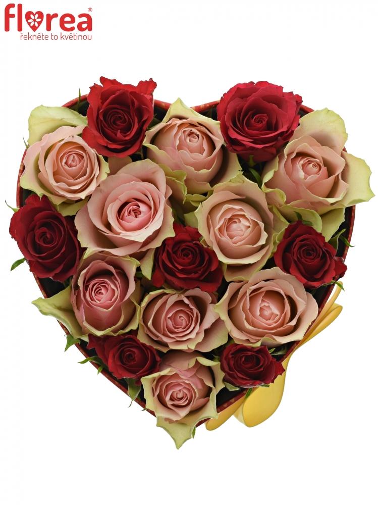 93c6d09f4 Krabička růží ROSEBELLINE červená 15x8cm | Florea