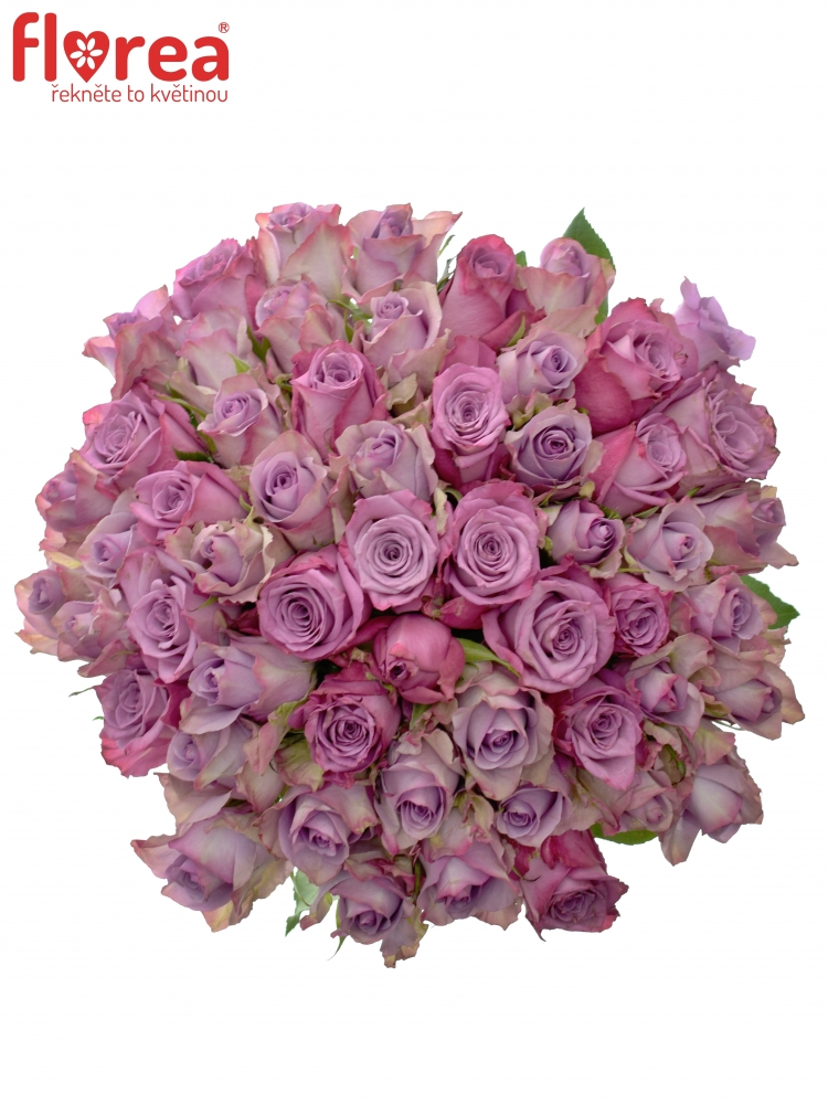 Kytice 55 růží ARISTOS 50cm