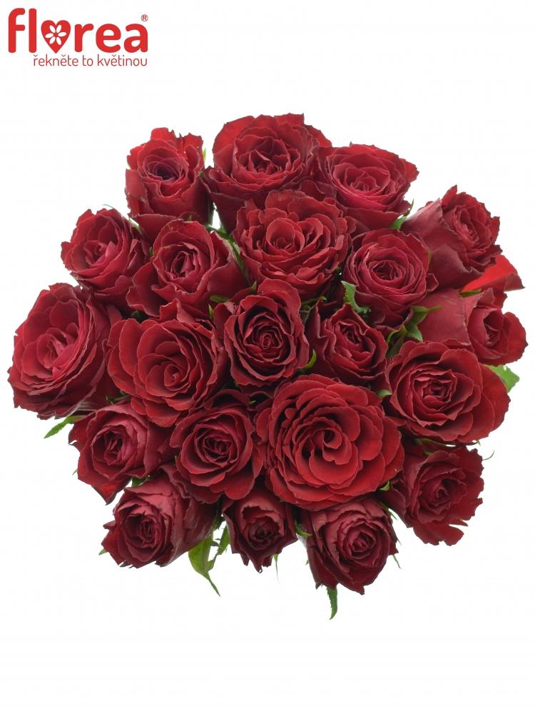 Kytice 21 rudých růží MADAM RED 60cm