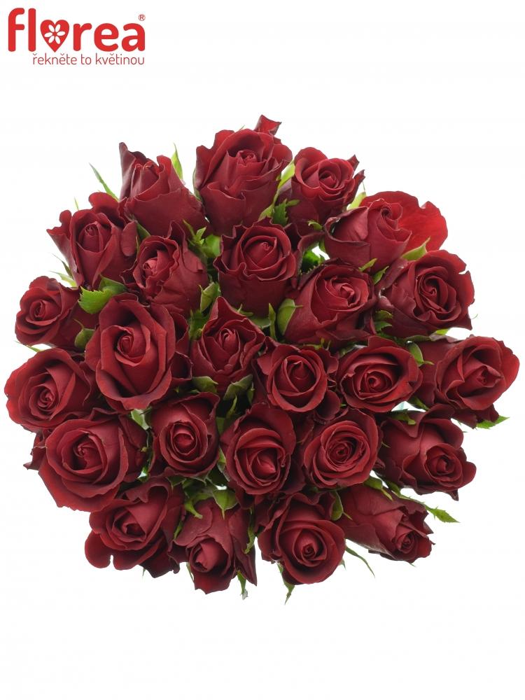 Kytice 25 červených růží FURIOSA 40cm