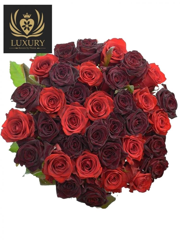 Kytice 35 luxusních růží DEVONY 70cm