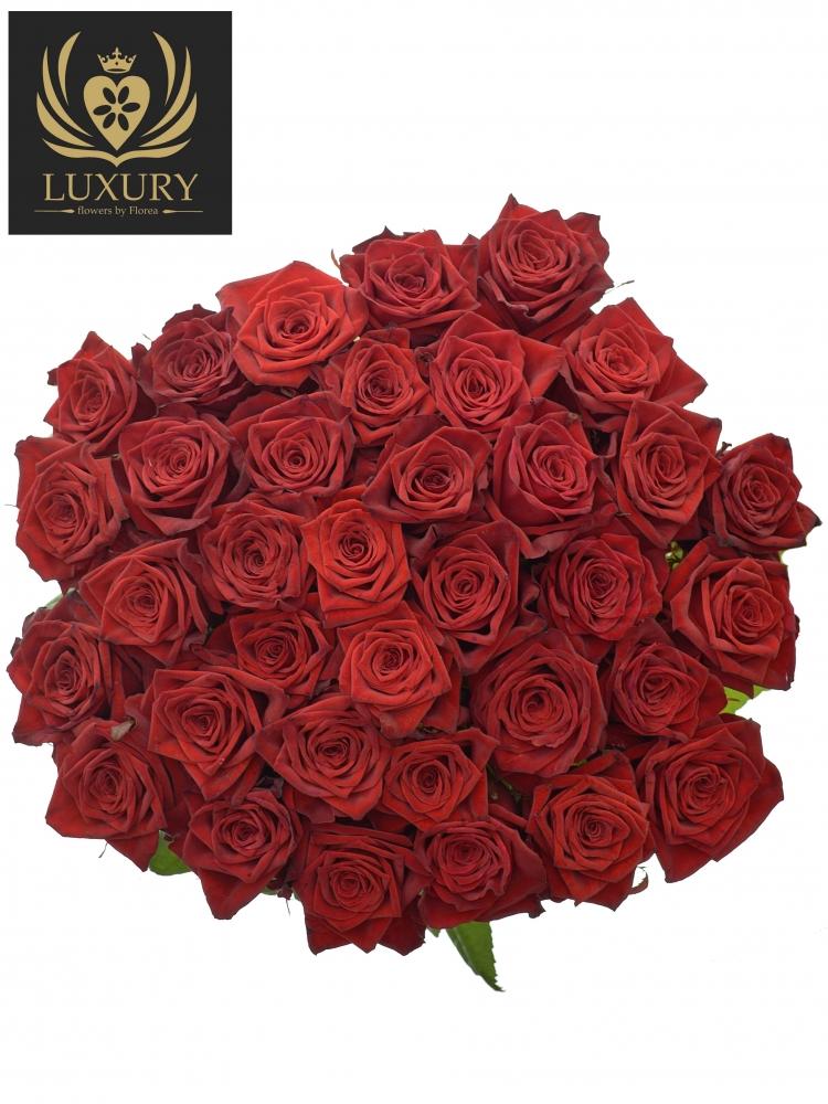 Kytice 35 luxusních růží TESTAROSSA 90cm