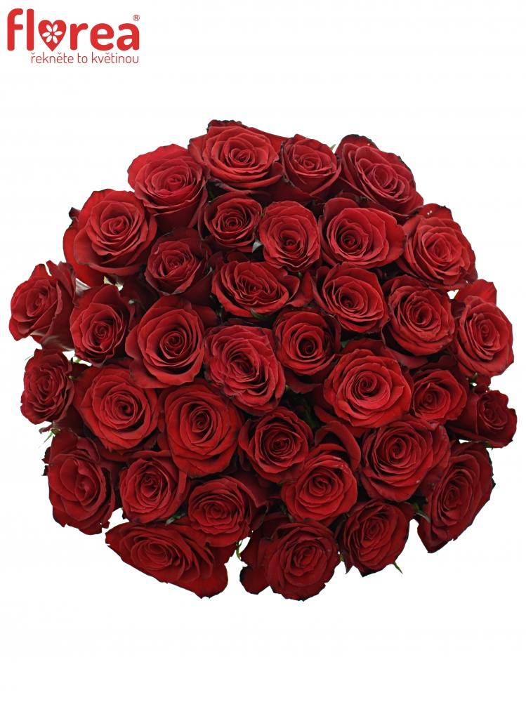 Kytice 35 červených růží PRESTIGE 60cm