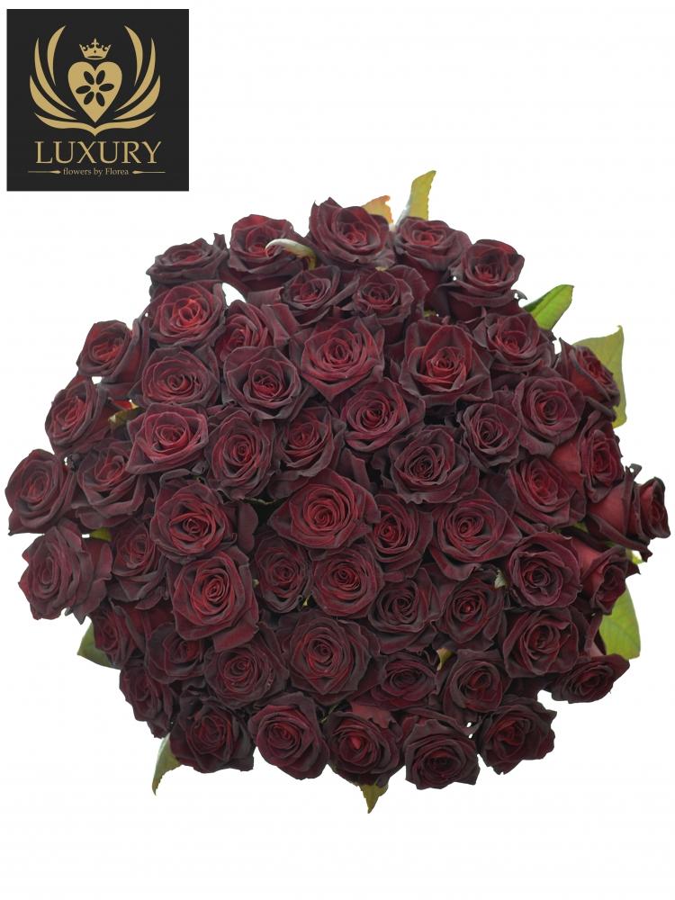 Kytice 55 luxusních růží BLACK BACCARA 70cm