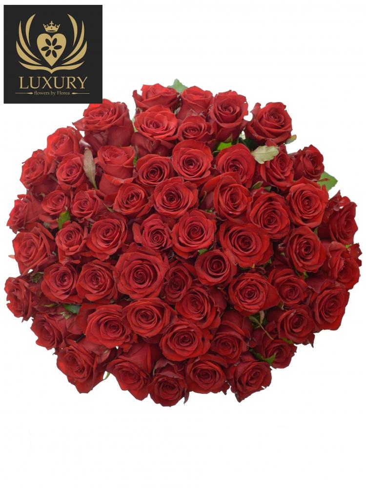 Kytice 55 luxusních růží RED EAGLE 60cm
